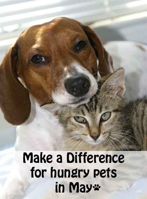 make a difference for hungry pets