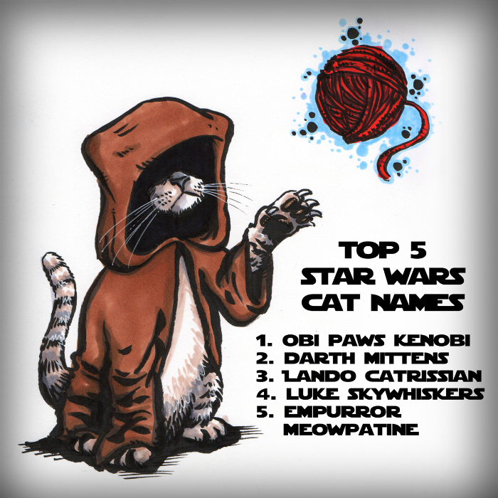 top 5 star wars cat names