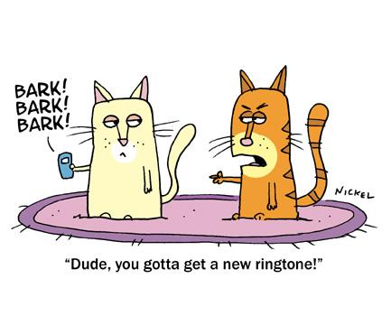 cat_toon_100110