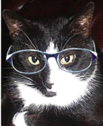bogey_glasses2