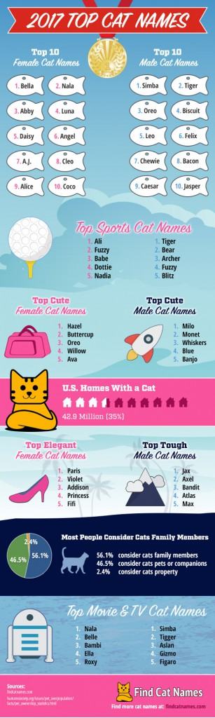 2017-top-cat-names